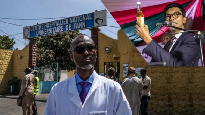 Etude scientifique sur l'Artémisia : Pr Moussa Seydi annonce la bonne nouvelle aux Sénégalais