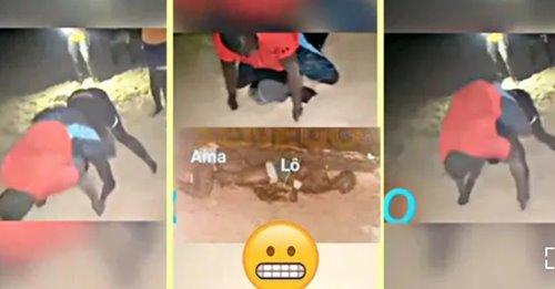 (Vidéo) Modou lô se moque d'Ama Baldé et montre comment il l'avait battu en Mbappatt